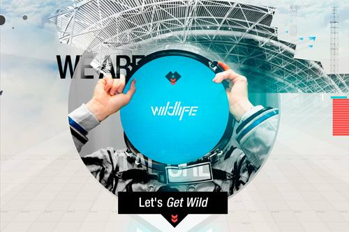 Wildlife.la - Let's get Wild