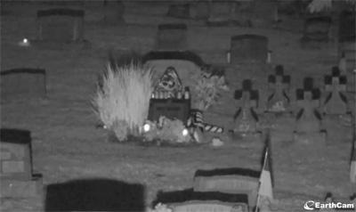 2013年8月8日のアンディー・ウォーホルのお墓