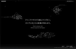 2分間の水族館 | Wonderful Moment Project | ソニー